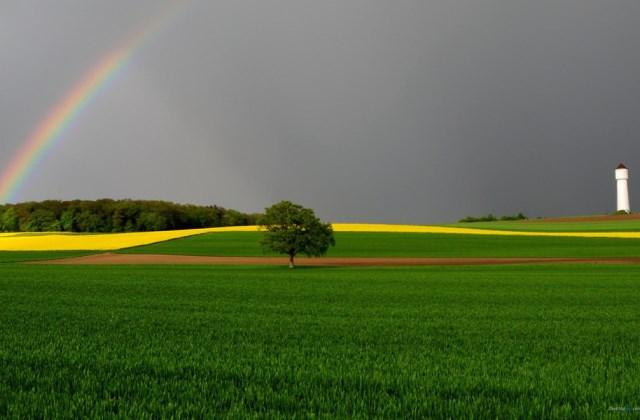 雨后彩虹的说说心情短语 看到美丽彩虹的朋友圈句子