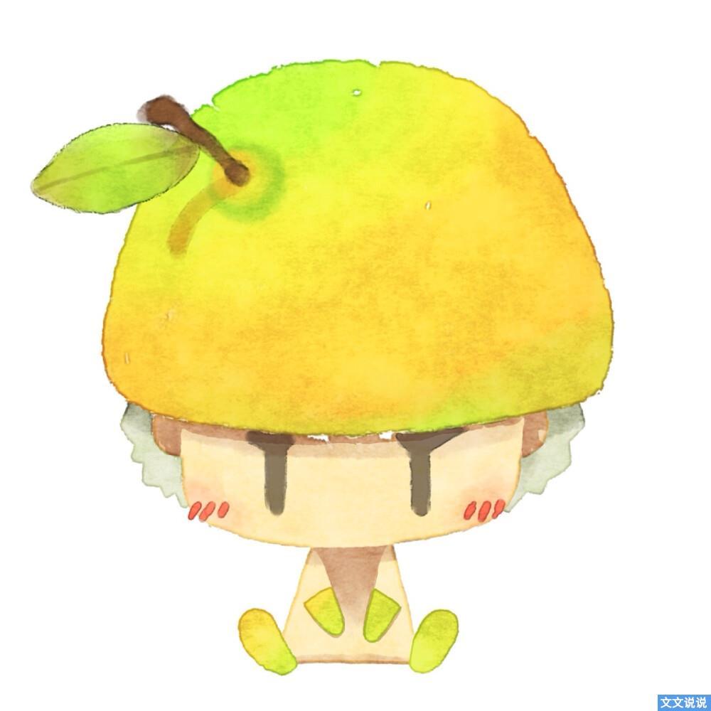 秋天吃第柚子的文案  秋天会有柚子和新的遇见