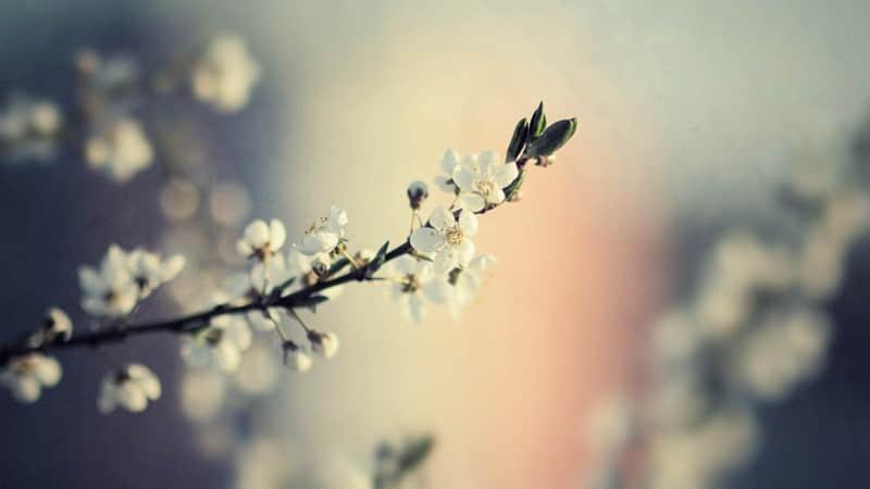 生活句子说说心情短语:任何关系你想陌生我绝对不多看你一眼